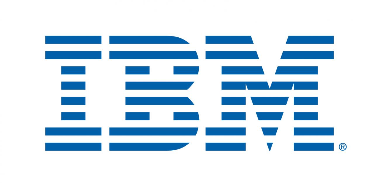 IBM-01